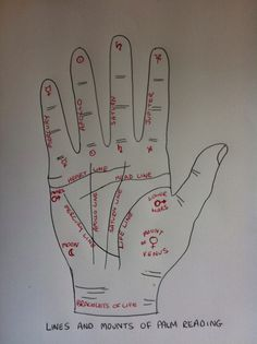 Palm Reading Guide - Palmistry Guide