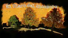 www.reiki-celta.com Conoce una de las áreas de los Reinos de Reiki Celta que levantará tu Ser, a través de tu Maestría de la Fundación!!!