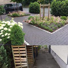 Sidewalk, Plants, Garden Planning, Landscaping, Walkways, Plant, Pavement, Curb Appeal, Planting