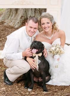 Bride groom + dog photo idea - dog in gold bow tie {Morgan Lindsay Photography}