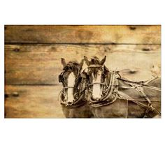 western country farm horse Canvas Art at CafePress Western Wall Decor, Country Farm, Horse Farms, Wyoming, Westerns, Canvas Art, Horses, Painting, Design