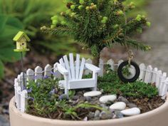 Mini potted Fairy Garden. This is cute showing that less is more.