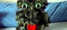 Demi, questa gattina, osservava da giorni il piccolo albero di natale che… scopri cosa succede in questo video e mi raccomando, tieniti alla sedia!