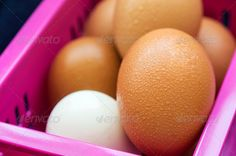 Realistic Graphic DOWNLOAD (.ai, .psd) :: http://sourcecodes.pro/pinterest-itmid-1006826837i.html ... Eggs ...  background, basket, breakfast, brown, chicken, cooking, easter, egg, farm, food, fragile, fresh, groceries, group, healthy, ingredient, macro, nature, organic, protein, raw, uncooked, yellow  ... Realistic Photo Graphic Print Obejct Business Web Elements Illustration Design Templates ... DOWNLOAD :: http://sourcecodes.pro/pinterest-itmid-1006826837i.html
