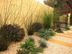 Mediterranean Garden Design, Pictures, Remodel, Decor and Ideas