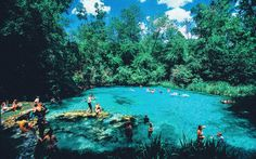1 Thing You Have To Do In Florida! in Florida, Fort White, Ichetucknee River, Ichetucknee Springs State Park, USA - Travel - Hand Luggage OnlyHand Luggage Only