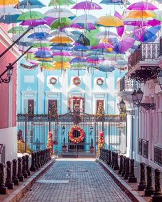Where to Find the Streets with Colorful Umbrellas | Dianamiaus Colorful umbrellas are taking the streets all around the world: discover where to find them on your next trip (exact locations included!) Puerto Rico Trip, San Juan Puerto Rico, Ecuador, Umbrella Street, Old San Juan, Colorful Umbrellas, Caribbean Cruise, Puerto Ricans, Travel Photography