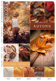 Herfst - vallende bladeren, warme tinten Phildar Phil Coton 3 is een 100% natuurlijk garen, verrijkt met aloë vera en mede daardoor uitermate geschikt voor baby kleertjes, knuffels en dekentjes