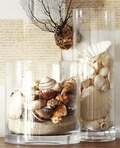 vases with sea shells