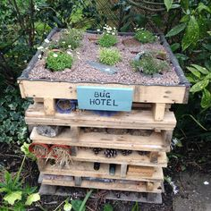 Insect hotel I built in my garden from pallets. Natural Playground, Outdoor Playground, Playground Ideas, Diy Garden Fence, Garden Beds, Insect Box, Bug Hotel, Sensory Garden, Outdoor Learning