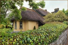 Old Irish straw-thatched roof