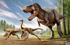 tyrannosaurus rex - Google-Suche