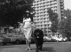 Index - Fortepan - Ez volt a Balaton aranykora Urban, Pictures, Photos, Grimm