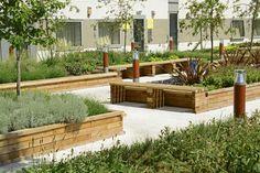 vyvysene zahony v zahrade - Vyhledávání Google
