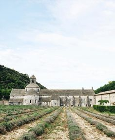 The Senanque Abbey where I imagine the lavender would look amazing during peak lavender blooms. But seriously it's even awe-inspiring without. by shopgossamer