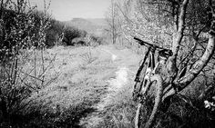 #neirone #mtb #mtblife #mtbporn #cycling #cycleaddicts #instamtb #mountainbike #nature_perfection #nature