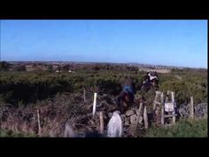 Foxhunting in Galway, Ireland with the Grallagh Harriers hunt. It was taken January 2015 but I typed as i was on autopilot! Trail Riding, Horse Riding, New England Usa, Riding Holiday, Cross Country Jumps, Beach Rides, Horse Ears, Fox Hunting, Galway Ireland