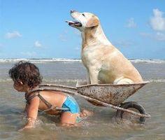 Fun at the beach.  Role reversal...hehe