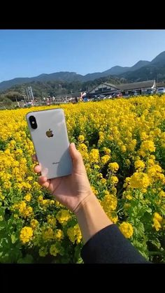 Photography Tips Iphone, Photography Challenge, Photography Basics, Photography Lessons, Photography Editing, Photography Projects, Photography And Videography, Girl Photography, Product Photography