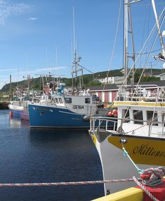 Harbor in Branch, Newfoundland (Canada) Newfoundland Canada, Newfoundland And Labrador, Vacation Places, Places To Travel, Lighthouse Cafe, Irish English, Canada Eh, Ocean Sounds, Prince Edward Island