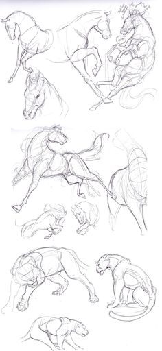 How to draw horses Horses. Pony. Draw. Sketch. art.