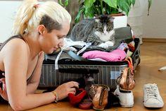 T-Shirts rollen, Hemden vakuumieren – vielen mühen sich ab, damit die Wäsche im Koffer faltenfrei bleibt. Einfacher geht's mit dieser… Lisa, Folding Laundry, Suitcase, Button Up Shirts, Time Out