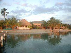 Photos of Green Parrot Beach Houses, Placencia - Resort Images - TripAdvisor