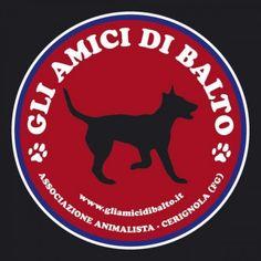 """BREAKING NEWS-ATTUALITA'-13.38 """"Gli Amici di Balto"""" annunciano imminente chiusura. Giannatempo assicura: """"Cercheremo di risolvere il tutto"""" Servizio di Mimmo Siena-LANOTIZIAWEB.IT-"""