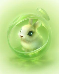 Tiny Bunnie...