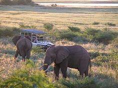 fothergill island zimbabwe - Google Search