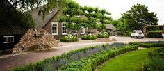 landelijke-tuin-boerderij Plant Design, Clematis, Garden Inspiration, Sidewalk, Country Roads, Mansions, House Styles, Plants, Outdoor