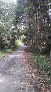 A Rainha da Montanha é uma corrida de montanha exclusivamente feminina (trail run) que acontece em Taiaçupeba, Mogi das Cruzes. Corrida feminina de montanha. Corrida feminina de trail.
