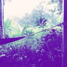 I am only happy when it rains... and I can swing in my hammock!   #yogajourneys #yogaretreat #wyjazdyzjogą #wakacjezjogą #simplelife #wanderlust #travelblog #podróże #travel #instatravel #relax #relaks #beautifuldestination #travelblogger #sheisnotlost #house #islandlife #hammock #simplelife #jungle #junglelife #yogaeverywhere #Thailand #tajlandia #rain #rainy #palmtree #palmleaf #palma #travellocal #offthebeatentrack