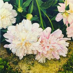 Beautiful peonies by artist Carmen Varela exhibition at the botanical gardens Madrid a must for flower lovers #carmenvarela #art #peony #madrid #artist #exhibition