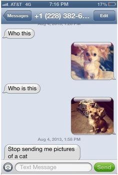 Great Responses To A Wrong Number Text