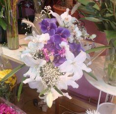 La sublimación de la orquídea vanda descendiendo a la tierra en perlas de gypsophylla