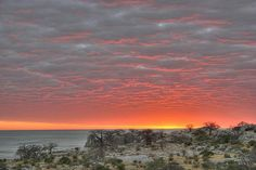 Kubu Island - Makgadikgadi Pans in Botswana - Sunrise | by Anton Matthee