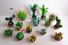 Quilled cacti, cactus