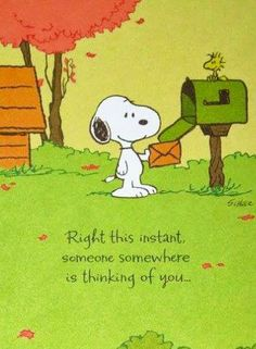 Discover Peanuts collectible General Greeting Cards featuring Snoopy, Woodstock, Charlie Brown, and the whole Peanuts Gang from the comic by Charles M. Peanuts Cartoon, Peanuts Snoopy, Cartoon Dog, Cartoon Pics, Snoopy Love, Snoopy And Woodstock, Pocket Letter, Snoopy Quotes, Peanuts Quotes