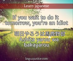 If you wait to do it  tomorrow, you're an idiot      明日やろうは馬鹿野郎     Ashita yarou wa  bakayarou / linguajunkie.com / Learn Japanese