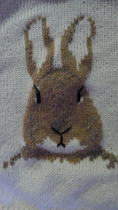 Ravelry: Peter Rabbit mother and daughter tunic pattern