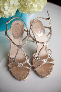Rene Caovilla Bridal Shoes   Wainwright House https://www.theknot.com/marketplace/wainwright-house-rye-ny-326567
