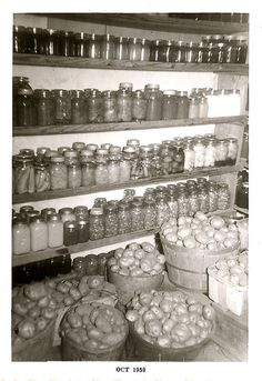 Home-canned food, potatoes & onions stored in the cool cellar.