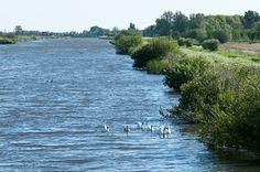 Het natuur- en recreatiegebied Broekpolder beslaat een kwart van het Vlaardings grondgebied. Hier kun je wandelen, fietsen, spelen, paardrijden en watersporten. Verder vind je hier allerlei sportverenigingen en de scouting. Vanuit de Broekpolder kun je de rest van het Midden-Delflandgebied verkennen.