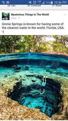 Ginnie Springs Florida Ginnie Springs Florida,Viagem Imagens Ginnie Springs Florida There are images of the best DIY designs in the world. Some images have no explanation. We are sorry for this situation. The pictures. Vacation Places, Dream Vacations, Vacation Spots, Beautiful Places To Travel, Cool Places To Visit, Fun Places To Travel, Amazing Places On Earth, I Want To Travel, Future Travel