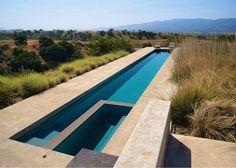 Amazing lap pool by Pamela Burton Landscape Architects.