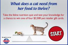 Win a $2500 Gift Card from Science Diet