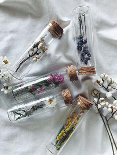 Tada_r.works fles met gedroogde bloemen - Apocalypse Now And Then Nature Aesthetic, Beige Aesthetic, Flower Aesthetic, Aesthetic Vintage, Aesthetic Drawing, Spring Aesthetic, Aesthetic Women, Aesthetic Outfit, Aesthetic Makeup