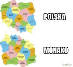 Wtf Funny, Funny Memes, Hilarious, Jokes, Polish Memes, Best Memes, Hetalia, Haha, Have Fun