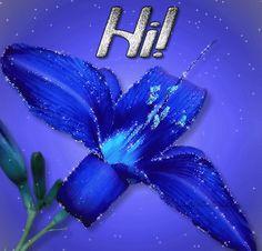 Decent Image Scraps: Hi